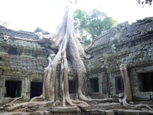 vietnam&cambodia06-07 311