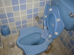 indian style toilet at Hotel Vansh Palace