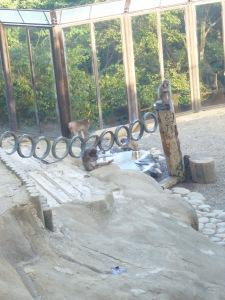 Mount-Takao 025