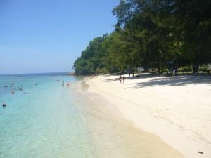 Borneo June '08 007