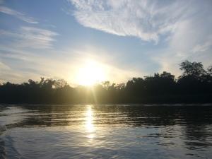 Borneo June '08 067