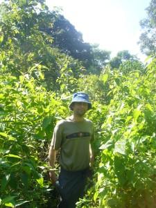 Borneo June '08 073