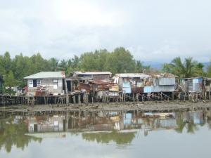Borneo June '08 129