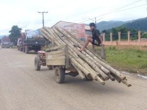 Laos Aug '08 106