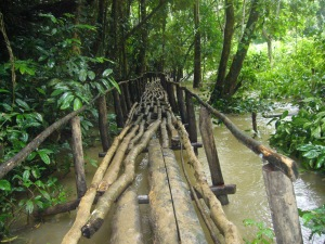 Laos Aug '08 194