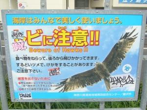 Enoshima 11 Sept '09 001