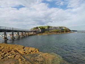 Australia 2012 118