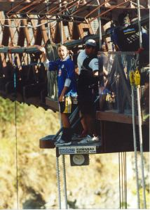 bungy1.1