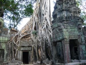 vietnam&cambodia06-07 319